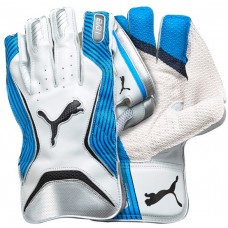 Puma Evo 1 Blue Wicket Keeping Gloves