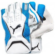 Puma Evo 2 Blue Wicket Keeping Gloves
