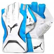 Puma Evo 3 Blue Wicket Keeping Gloves