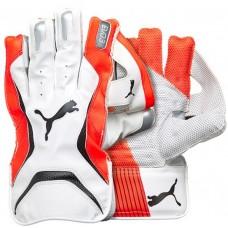 Puma Evo 3 Red Wicket Keeping Gloves
