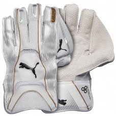 Puma Evo SE Wicket Keeping Gloves