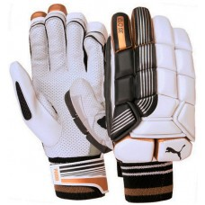 Puma Evo SE Batting Gloves