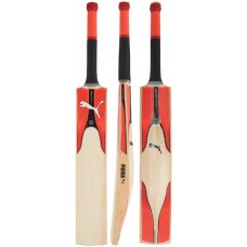 Puma evoSPEED 3.17 Cricket Bat