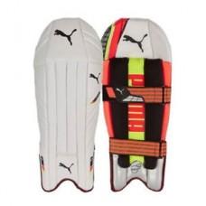 Puma Evo Speed Wicket Keeping Pads