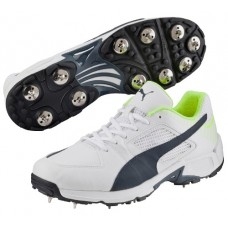 Puma evoSPEED Team 1.3 Cricket Shoes