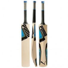 Puma evoPOWER 2Y Cricket Bat