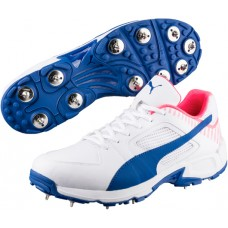 Puma evoSPEED Team Cricket Shoes