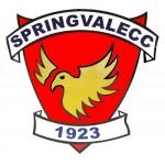 Springvale Cricket Club